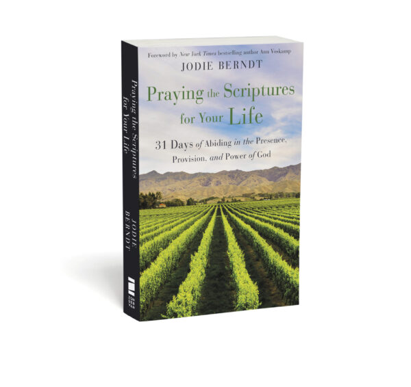 Praying the Scriptures for Your Life book